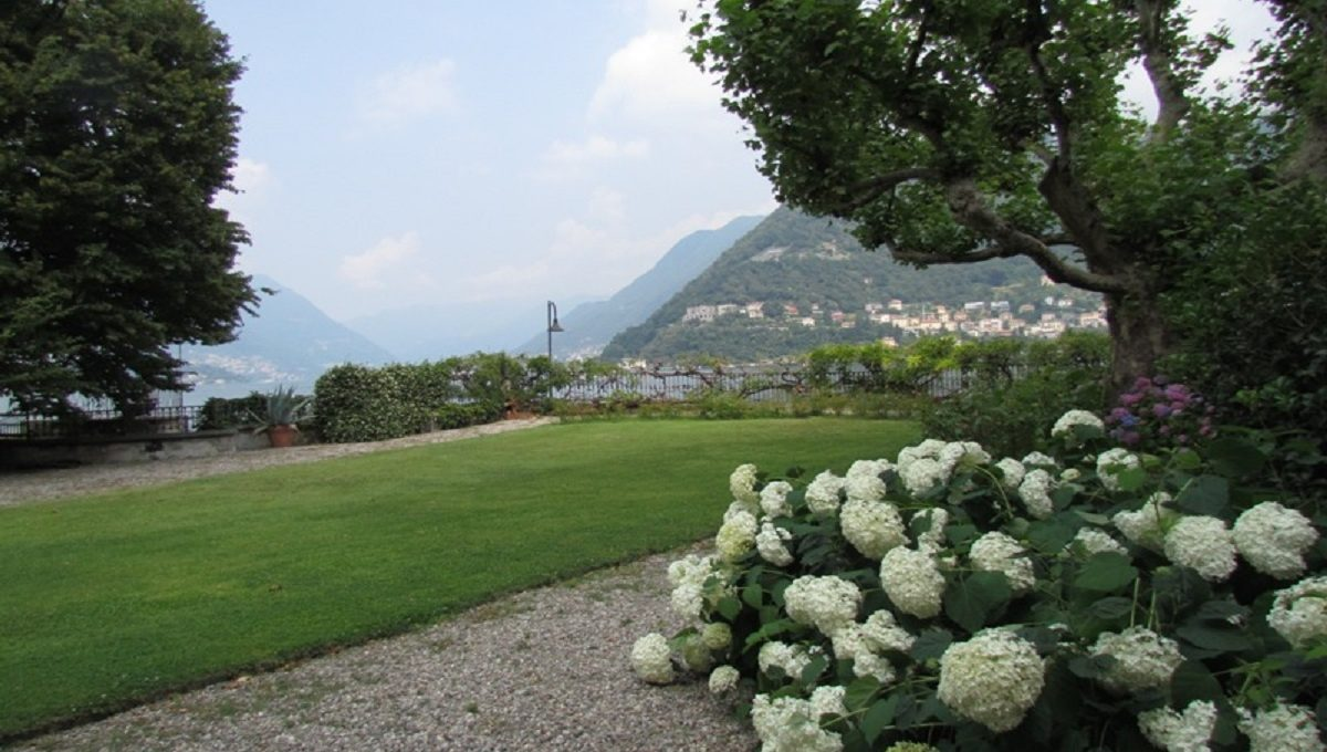 Garden overlooking city