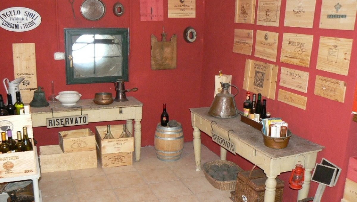 Food and Wine Cellar